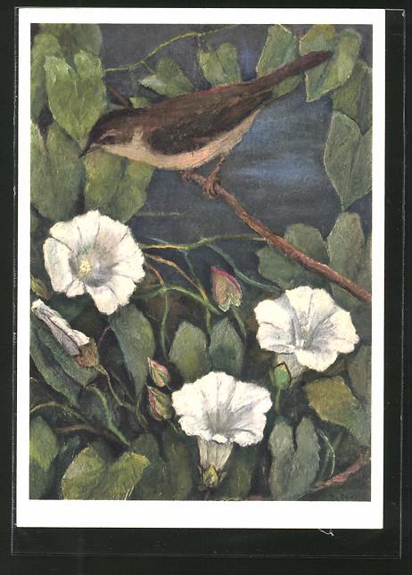 Künstler-AK Jean Zeltner: Teichrohrsänger auf einem Ast, Blüten