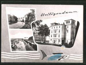 AK Heiligendamm, Haus Berlin, Strassenpartie mit Gebäudeansicht, Strand
