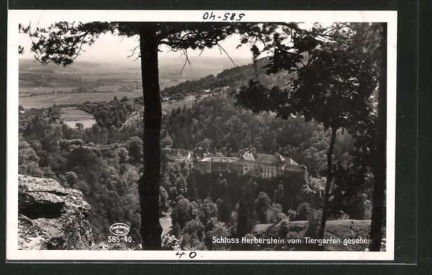 AK Herberstein, das Schloss vom Tiergarten gesehen