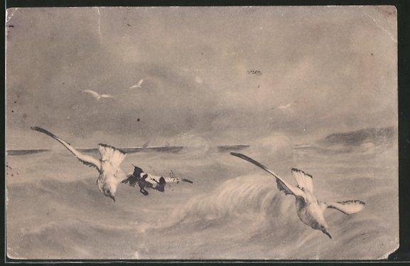 AK Möwen im Flug über die stürmische See