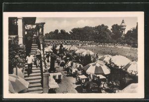 AK Budapest, Margitsziget, Palatinus strand, Freibadpartie