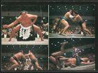 AK Sumo-Ringer bei einem Wettkampf