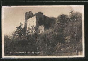 AK Habsburg, Blick zum Schloss