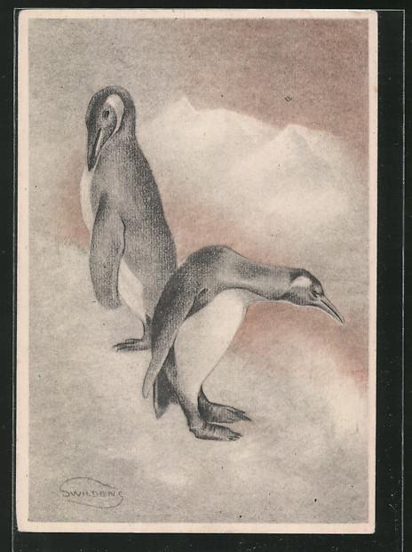 Künstler-AK Swildens: Pinguine auf einer Eisscholle