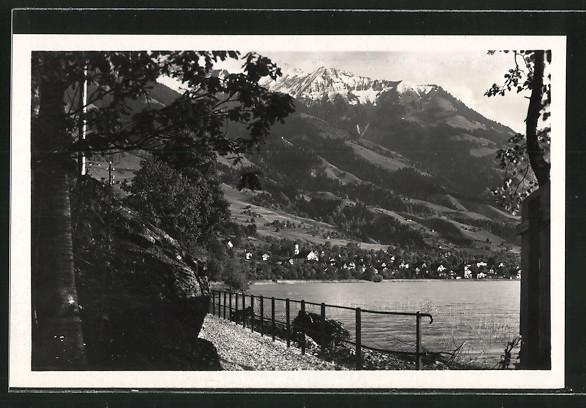 AK Sachseln, Partie am Seeweg mit Blick auf die Ortschaft