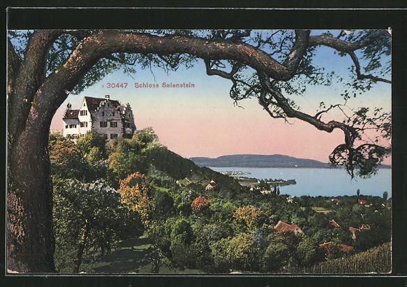 AK Salenstein, Waldpartie mit Durchblick zum Schloss Salenstein
