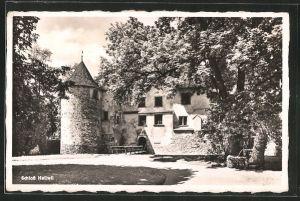 AK Seengen, Blick zum Schloss Hallwyl