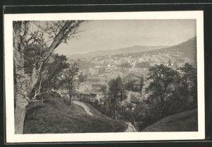 AK Sarajewo, Blick auf die Stadt