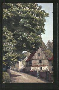 AK Photochromie NR: 2179, Strassenpartie mit Gebäudeansicht & blühender Kastanie