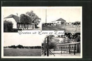 AK Loon op Zand, Venloonstraat 13, Gebäudeansicht, Kühe, Hühner