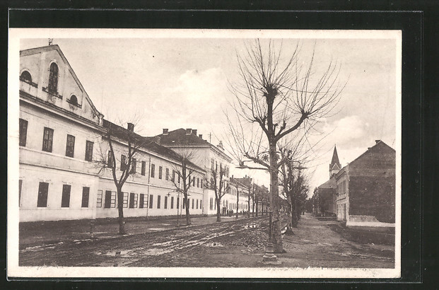 AK Karlovac, Strassenpartie mit Gebäudeansicht