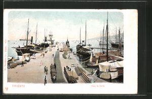 AK Trieste, Molo S. Carlo mit Schiffen