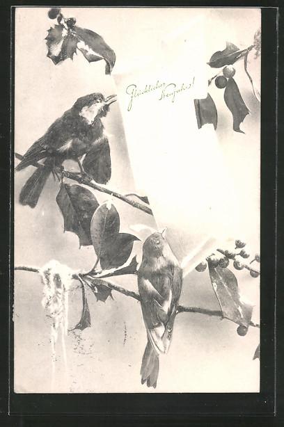 Künstler-AK Brüder Kohn (B.K.W.I) Nr.2622/1: Vögel sitzen auf einem Ast mit Neujahrsgruss auf einem Blatt Papier