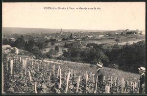 AK Chénas, moulin á Vent, grand crus de vin