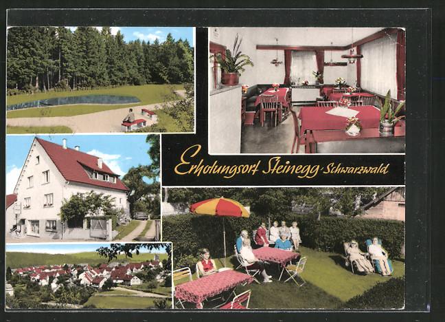 AK Steinegg, Schloss-Café-Pension, Aussen- u. Innenansichten