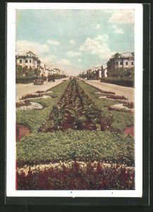 AK Karaganda, Grünanlagen in einer Strasse