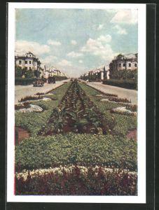 AK Karaganda, Strasse mit Villen und Grünanlagen