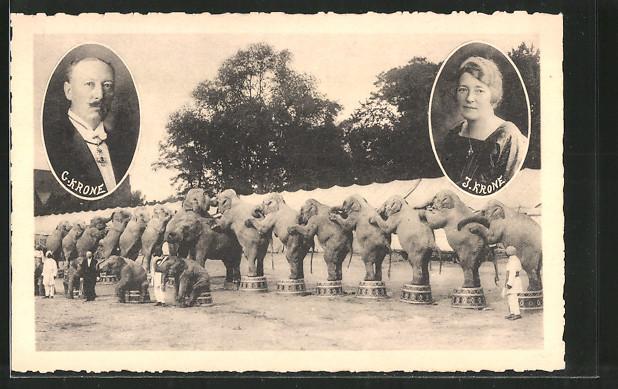 AK Elephantendressur im Zirkus Krone und Porträts von C. Krone und J. Krone