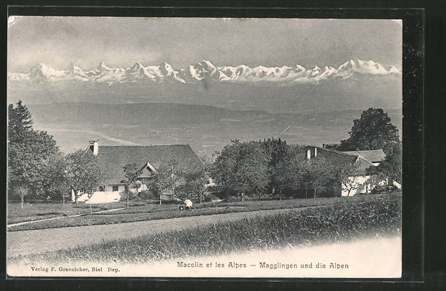 AK Magglingen, Ortsansicht mit den Alpen