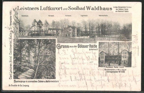 AK Halle / Saale, Leistner's Gasthaus und Dölauer Heide, Kurhaus, Badehaus, Kursaal, Logirhaus, Wandelhalle