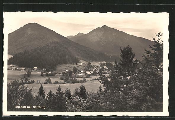 AK Ebenau, Ortspanorama mit Bergen
