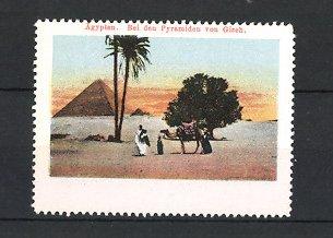 Reklamemarke Ägypten, Beduine mit Kamel vor den Pyramiden von Giseh