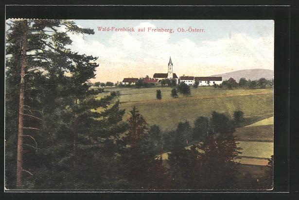 AK Freinberg, Wald-Fernblick zum Ort