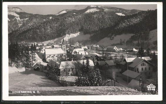 AK Hohenberg, Totalansicht aus der Vogelschau
