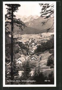 AK Neuberg a. Mürz, Partie am Veitschbachgraben