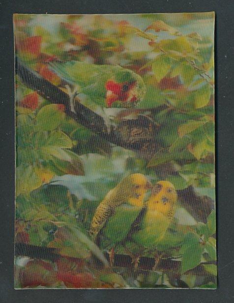 3D-AK Parrots, Wellensittiche sitzen auf einem Zweig