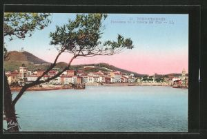 AK Port-Vendres, panorama vu á travers les pins