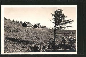 AK Bergerhütte a.d. Görlitzen, Ortsansicht