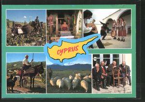 AK Cyprus, Traditional Life, Schafhirte, Tänzer in Volkstracht, Eselreiter