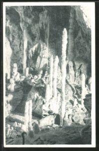AK Postojna, Motiv aus der Adelsberger Grotte