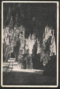 AK Postojnska jama / Adelsberger Grotte, Partie in der Tropfsteinhöhle