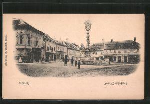 AK Mödling, Franz Josefs-Platz mit Säule