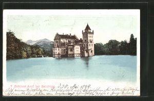 AK Anif, Blick zum Schloss Anif