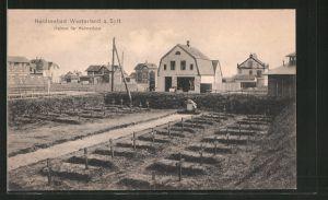 AK Westerland, Friedhof für Heimatlose, Elisabethstrasse