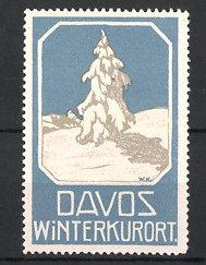 Reklamemarke Davos, Winterkurort, eingeschneiter Baum in den schweizer Alpen