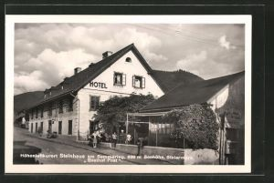 AK Steinhaus a. Semmering, Gasthof Hotel Post