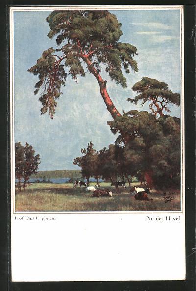 Künstler-AK Wohlgemuth & Lissner, Primus-Postkarte No. 5032: An der Havel, Idyll mit Rindern