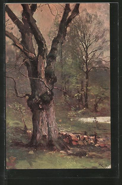 Künstler-AK Wohlgemuth & Lissner, Primus-Postkarte No. 824: Der deutsche Wald, knorriger Baum