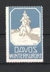 Reklamemarke Davos, Winterkurort, eingeschneite Tanne in den Schweizer Alpen