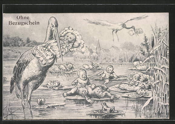 AK Ohne Bezugschein, Storche und Teich voller Säuglinge