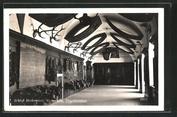 AK Stubenberg, Trophäensaal im Schloss Herberstein, Innenansicht
