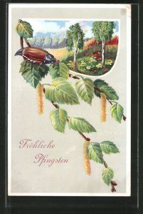 Präge-AK Fröhliche Pfingsten, Maikäfer auf Birkenzweig, Frühlingsidyll
