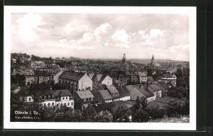 AK Döbeln, Blick über die Dächer der Ortschaft