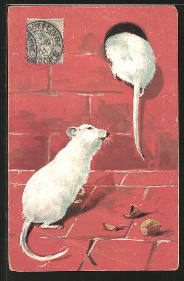 AK Weisse Mäuse mit Haselnüssen an einem Loch in der Mauer
