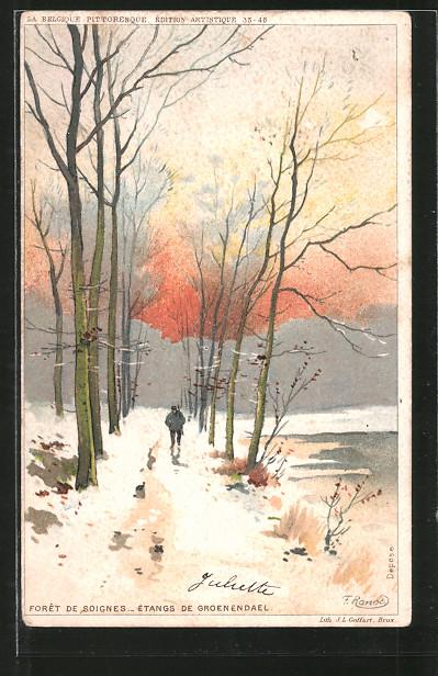 Künstler-AK F. Ranot: Forêt de Soignes, étangs de Groenendael