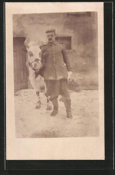 Foto-AK Feldgrauer Soldat posiert mit Rind, Kuh, Vieh